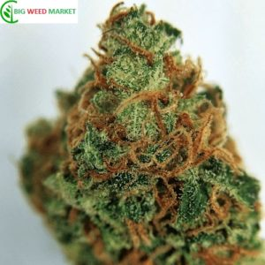 Buy Sweet Berry Marijuana Online