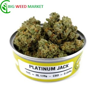 Buy Platinum Jack Weed Tin Online Belgium