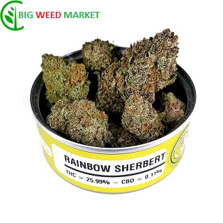 Buy Rainbow Sherbert Weed Tin Online Hungary
