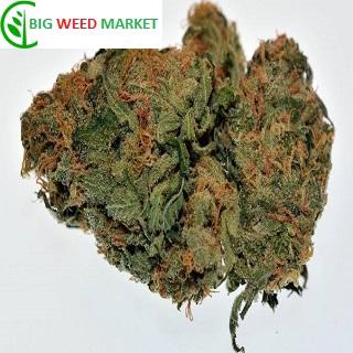 Buy Moonshine Haze Weed Online