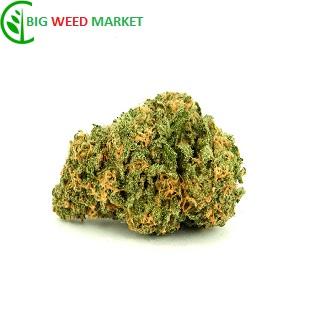 Buy Wet Dream Weed Online Europe
