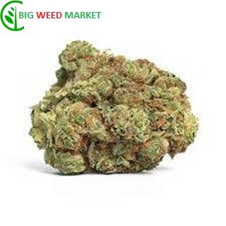 Buy Buddha Haze Weed Online Europe